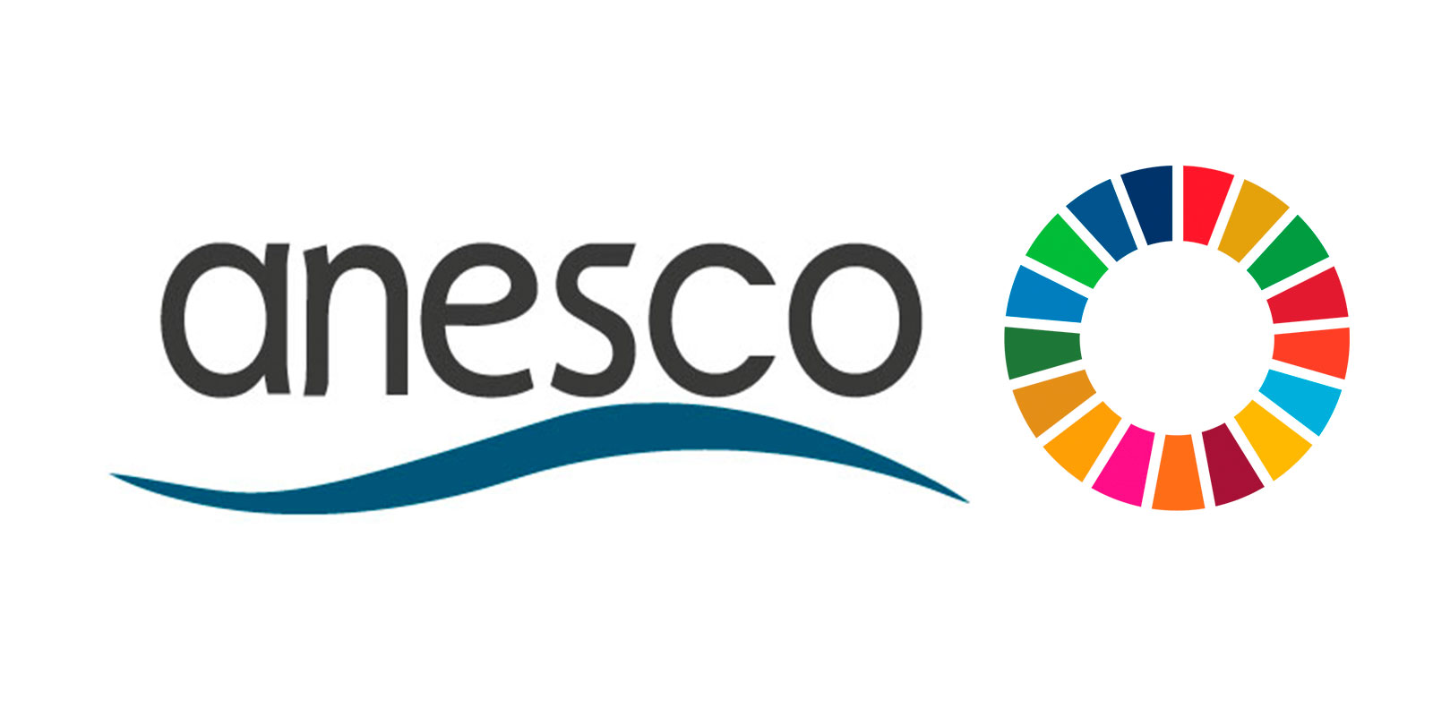 noticias de estibadores - ANESCO